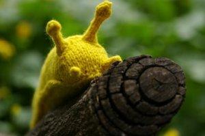 banana_slug3